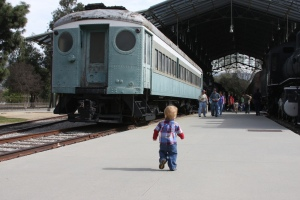 T's Train List