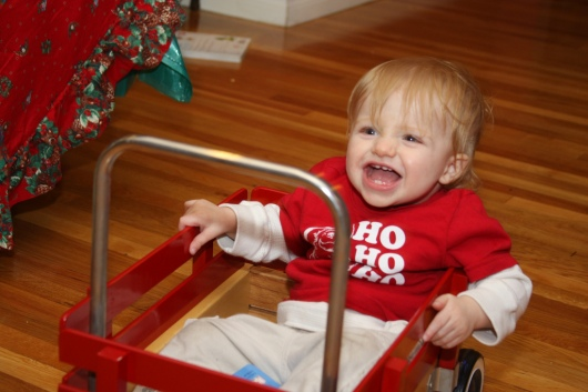 T at 14-months-old. I guess he didn't train this season either, but he did get into a small wagon (close!).