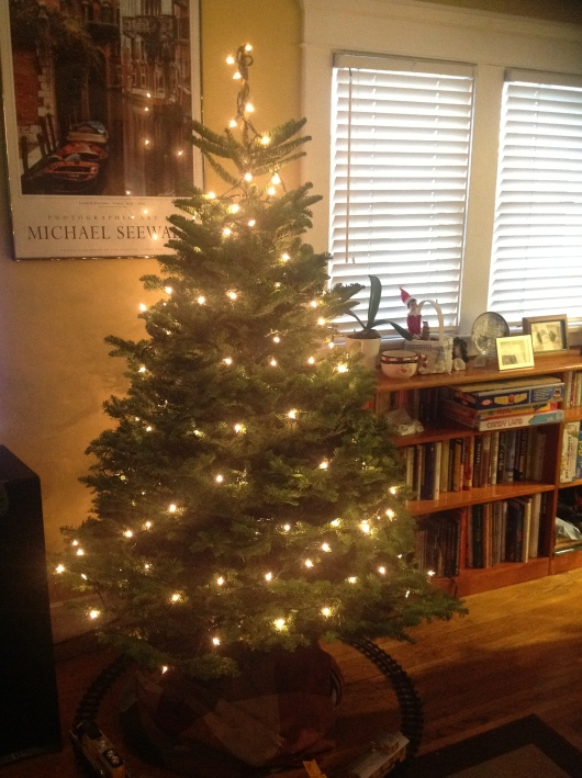 The tree is lit and ready for decorations!