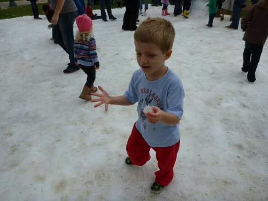T gets his hands wet and cold in the snow at Rose Park. Notice the T-shirt? Yes, I realize that's pretty bad mothering, but we were more concerned about hopping out of the truck to get into that snow while it lasted rather than actually staying warm. T ran around enough to stay warm anyways (and C later returned with his sweatshirt).
