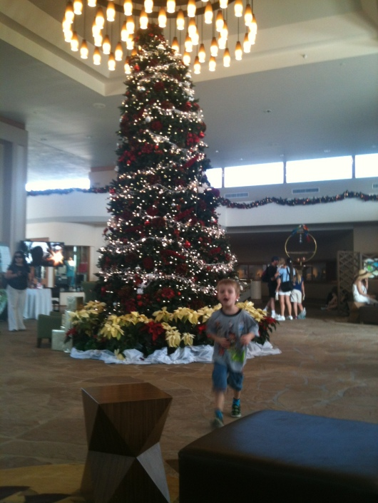 It's a Mele Kalikimaka even a few days after the fact at the Hilton Waikoloa Village on the Big Island of Hawaii. Again, not a great shot, but one of the only ones that semi-turned out from my quick iPhone captures on-the-go.