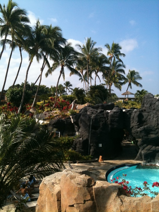 The Kona Pool waterslide winds its way in that rocky structure there in the background.