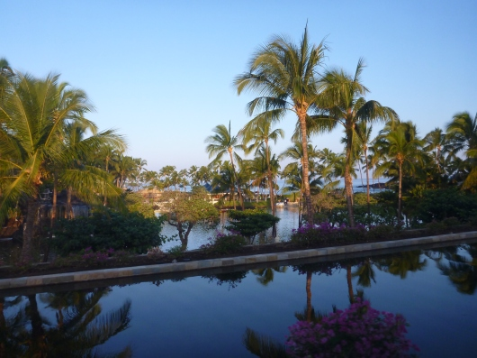 Ah-lo-ahhhhh! This familiar view welcomes us back to Waikoloa on the Big Island of Hawaii along the Kohala Coast about 20 miles of Kailua-Kona.