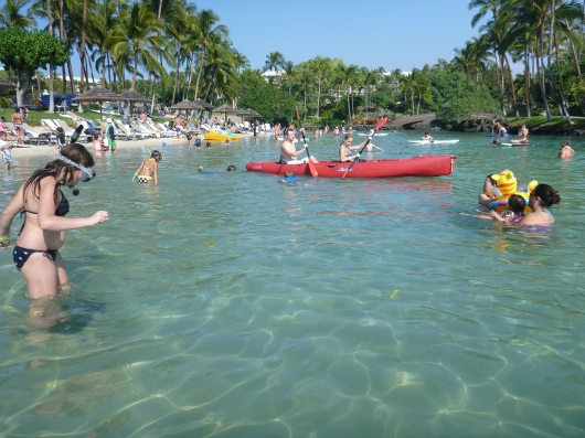 A view north in the Hilton Waikoloa's lagoon. Yes, it' busy in the winter with everything from snorkelers to kayakers. Be careful out there!