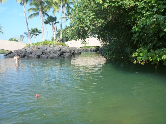A quieter area of the Hilton Waikoloa's lagoon (facing west).