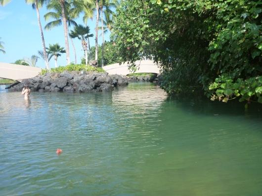 A quieter area of the Hilton Waikoloa's lagoon (facing west).