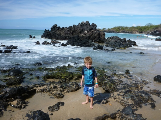 T at Mile Marker 69 Beach inside the Hapuna State Beach Park Rec. Area (Big Island, HI).