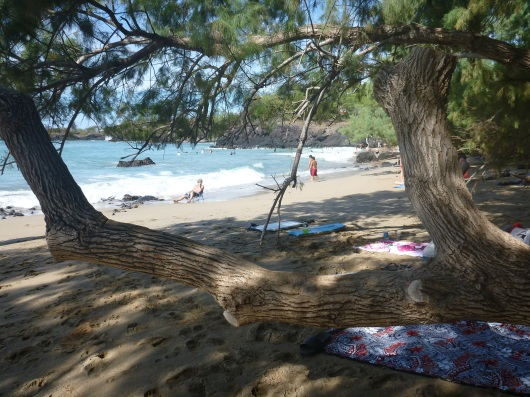 A peek out from our shady spot on the beach New Year's Day 2013.