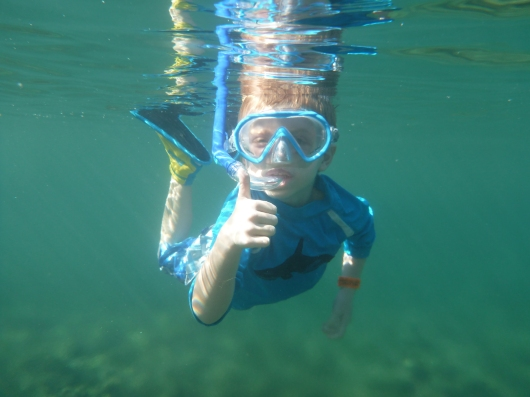 I'm T, and I approve of snorkeling!