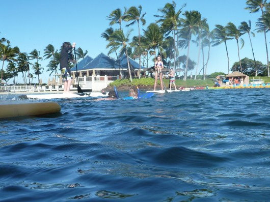 C and T head out on a snorkeling adventure in the Hilton Waikoloa Village's lagoon.