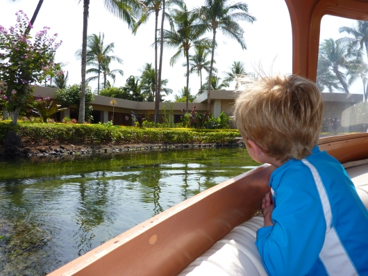 T enjoys the ride on (and view from) one of Hilton Waikoloa's canal boats.