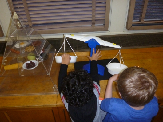"T and another boy ""play"" with a scale in the science lab at his school's math and science night."
