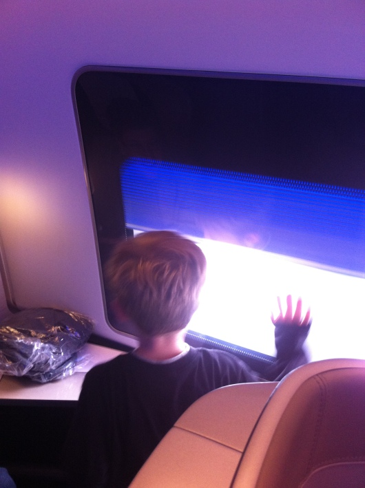 T was fascinated by the automated window shades in BA's First cabin. Hey, whatever entertains you and isn't bothering anyone else, go for it, T!
