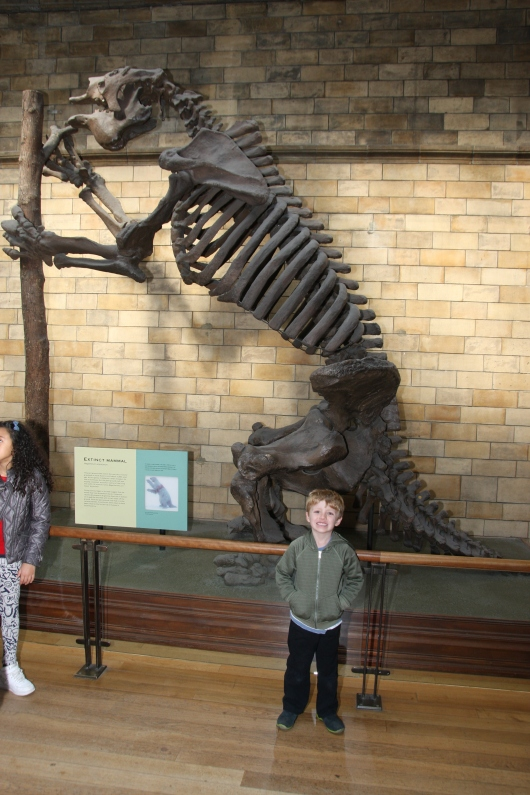 T in front of one of the dinosaurs on display at London's Natural History Museum. This was one we didn't have to queue to see.