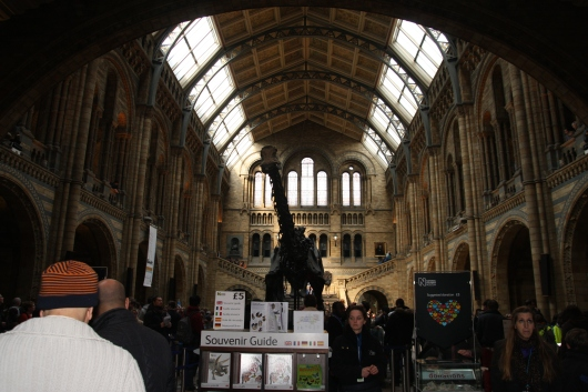 Dinosaur foyer at the Natural History Museum, London. Visitors queue here for the larger dinosaur gallery (entrance is to the left in this photo).