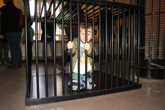 T's turn in the animal cage at the Tower of London.