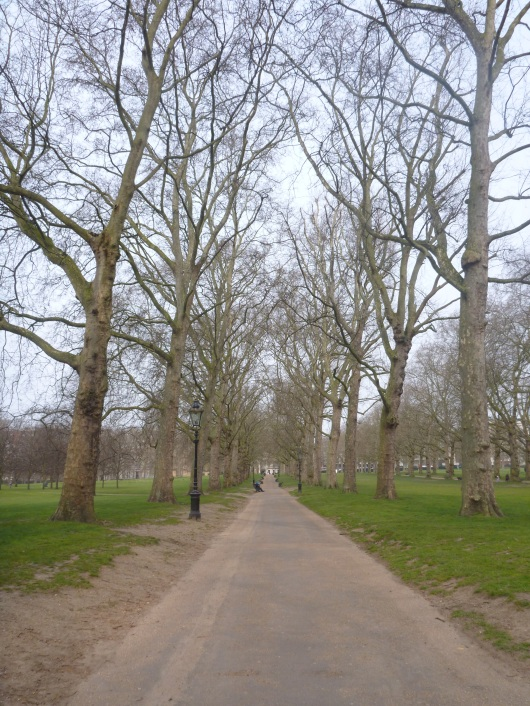 A tree-canopied path inside of Green Park, London, one of the Royal Parks' eight open spaces dedicated to royal and natural preservation in the city-center.