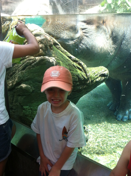 Close-up of T with hippo at the San Diego Zoo.