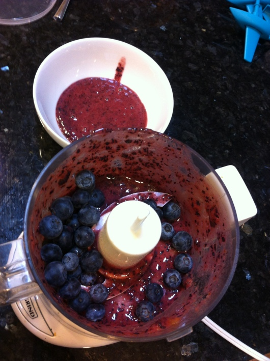 My blueberry mixture, which consisted of only the berries and homemade applesauce.