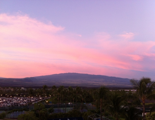 Good morning from the Hilton Waikoloa Village!