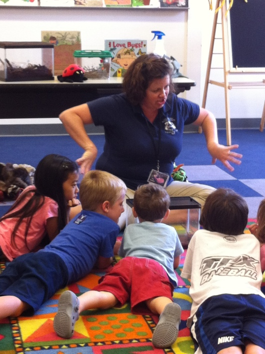 """Ms. Dana demonstrating how the roaches """"hiss"""" and move while the kids watch them in their terrarium."""