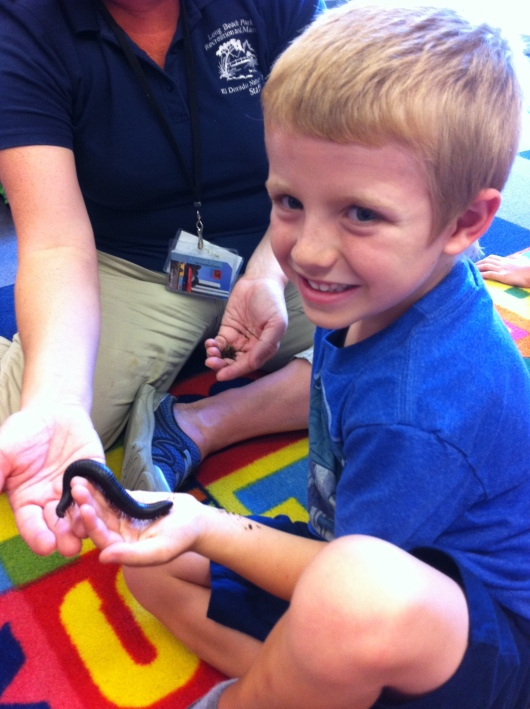T holding a millipede of some (large) sort during the El Dorado Nature Center show at the library Wednesday.