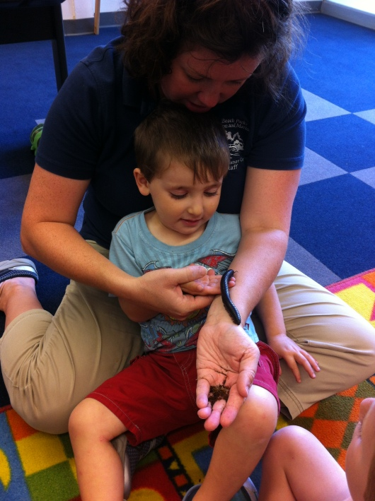 T's friend isn't even three-years-old yet and here he is front and center with Ms. Dana letting a millipede crawl all over his arm! What a brave kid!