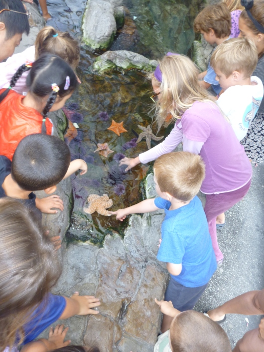 The tide pools at the Cabrillo Marine Aquarium gave the kids ample hands-on time with the local sea creatures.