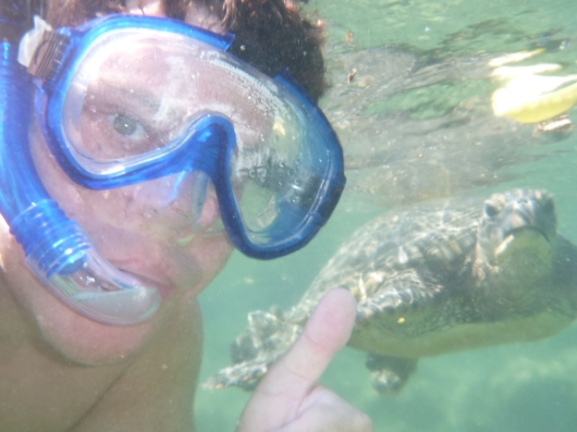 OMG, C, a turtle just photo-bombed you!