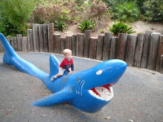 T on the shark (August 2009). I didn't see him on or around this area this time, but admittedly I gave him a lot more room to roam this time at 5-1/2-years-old than I did when he was just a toddler.