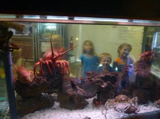 The kids of Coastal Cuties (our playgroup) pose through one of the tanks at the Cabrillo Marine Aquarium.