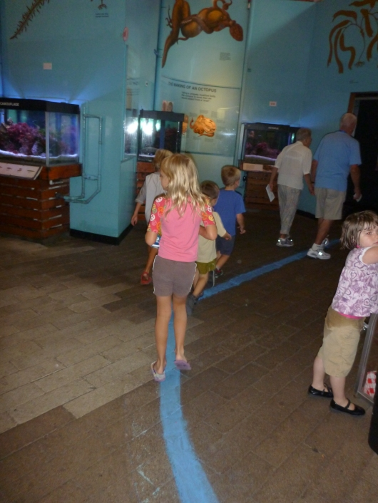 Follow the blue line through the Susanne Lawrenz-Miller Exhibit Hall to the Tidepool Touch Tank at the Cabrillo Marine Aquarium.