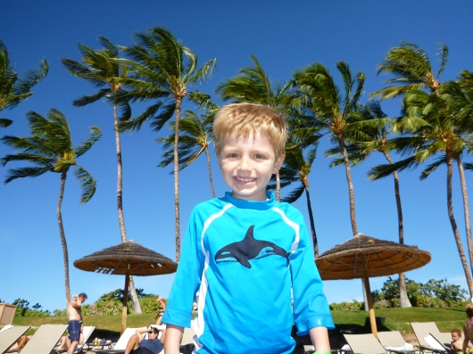 T in Hawaii. The Photo.