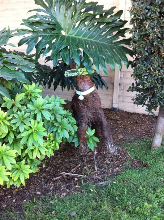 This pup ends our garden tour today. Thanks again to the artist(s) responsible for these natural, handcrafted additions to our neighborhood!