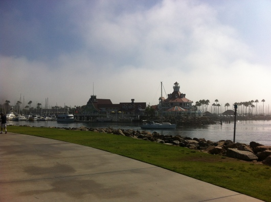 Once the fog lifted, we got to enjoy views like this during this year's iWalk... for Kids.