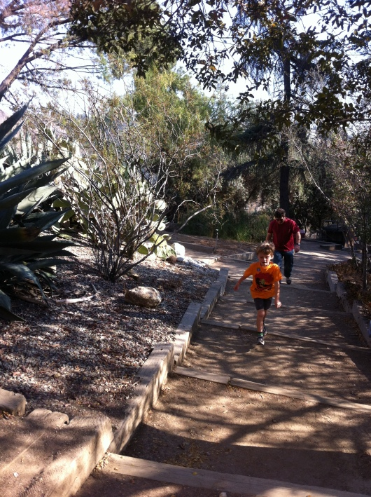 The boys hike back up from the lower area of the gardens out back of the Southwest Museum.