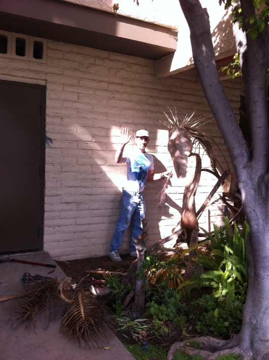 Meet Glen Mann, an artist/gardener who resides in the Rose Park neighborhood of Long Beach (CA). He's the one responsible for all that awesome palm frond and other green artwork that T and I admired several months back.