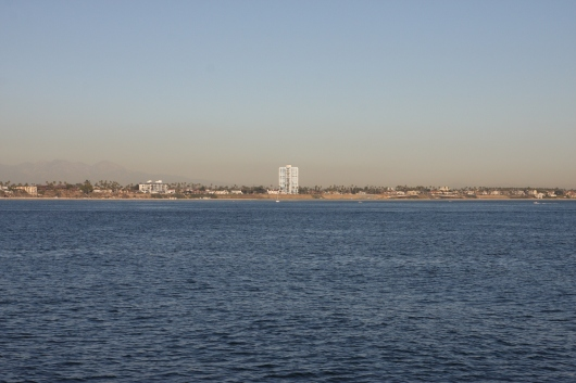 View of the Long Beach coastline from off-shore. The tall blue building center-photo is the Galaxy Towers at the end of our street!