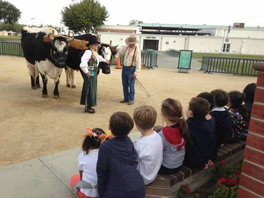 T and fellow students observe the farmers with the oxen. This was T's favorite animal at the farm.