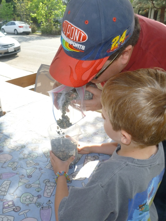 C helped T pour the rocks for his science fair project.