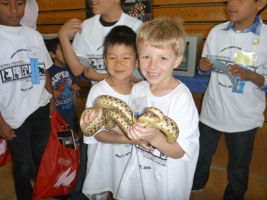 Snakes and friends, together at last, at this year's district science fair.