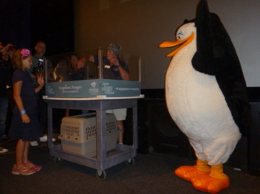 Hooray! The name of the new penguin chick at the Aquarium of the Pacific is...
