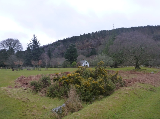 Wicklow, Glendalough, Ireland, an easy day-trip from Dublin. And a darn beautiful one.